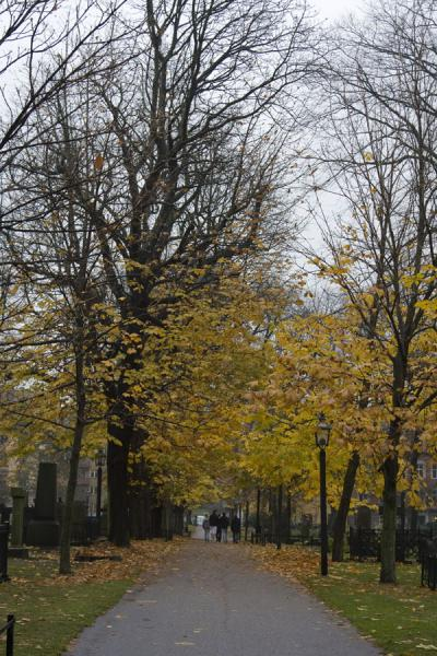 Foto di Lane near Katarina Kyrkan in autumnStoccolma - Svezia
