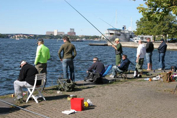Picture of Stockholm waterfront (Sweden): Fishing at Riddarholmen: Swedes at the waterfront
