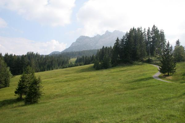 Picture of Fräkmüntegg (Switzerland): Lovely path up Mount Pilatus towards Fräkmüntegg