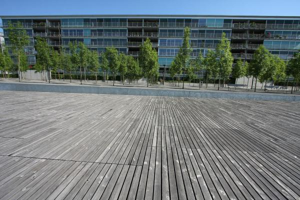Wooden floor, trees and apartment block define Oerliker Park | Oerliker Park | Switzerland