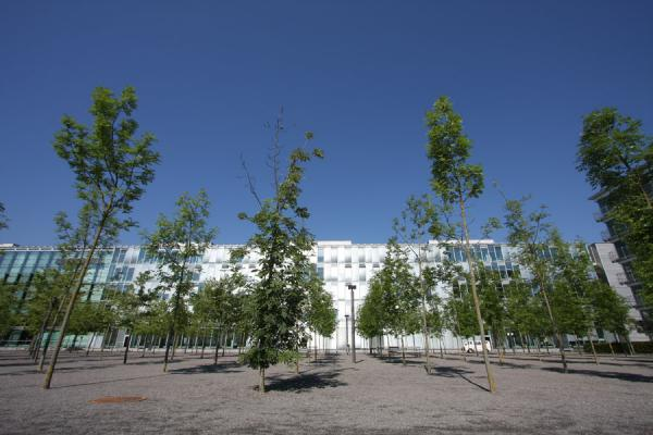 Picture of Oerliker Park: young trees and modern office building