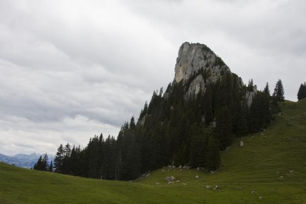 Picture of Trees surrounding a mountain in the Stockhorn range