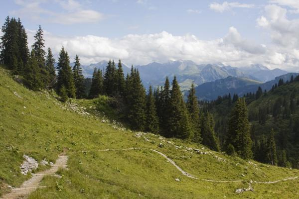 Trail on the southern slopes of the Stockhorn | Stockhorn | Switzerland