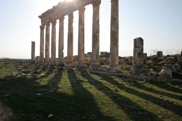 敘利亚 (Apamea columns casting their shadows)