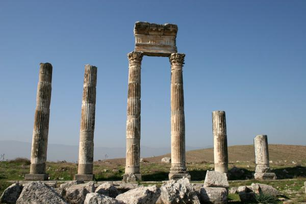 Picture of Apamea (Syria): Standing columns of Apamea blending in with the landscape