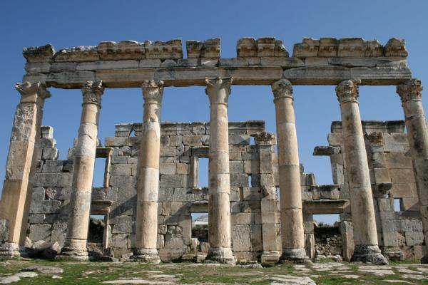 Picture of Apamea (Syria): Apamea columns with remains of wall behind