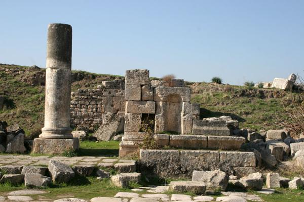 Picture of Apamea (Syria): Apamea: detail of remains of house at the cardo