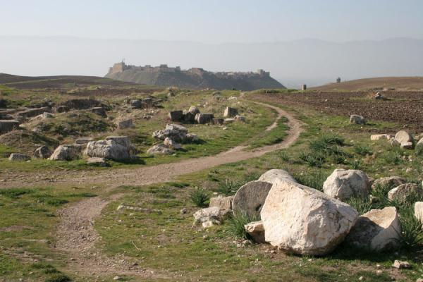 Picture of Apamea (Syria): Qala'at al Mudiq near Apamea seen from a distance