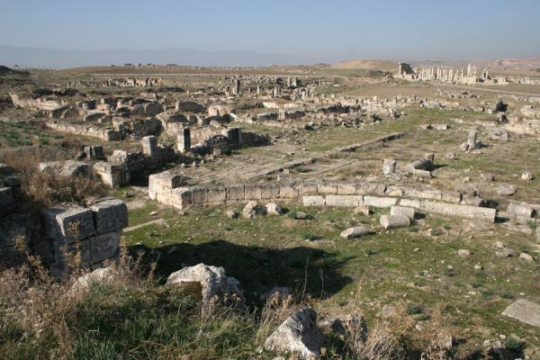 Foto van Looking back at Apamea from the remains of the cathedralSerjilla - Syrië