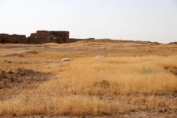 Foto van Empty landscape of Doura Europos with the defensive city wallDoura Europos - Syrië
