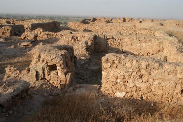 Picture of Ruins at Doura EuroposDoura Europos - Syria