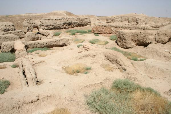 Picture of Mari (Syria): Ruins of Mari, once powerful city in the Mesopotamian era