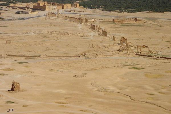 Picture of Palmyra City (Syria): Palmyra; overview