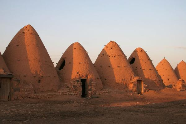 Picture of Beehive houses (Syria): Beehive houses in Sarouj