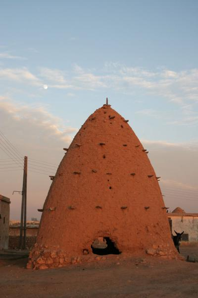 Picture of Beehive houses (Syria): Tall beehive house in Sarouj
