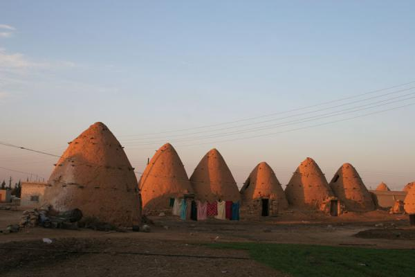 Picture of Beehive houses (Syria): Sunset over a row of beehive houses in Sarouj