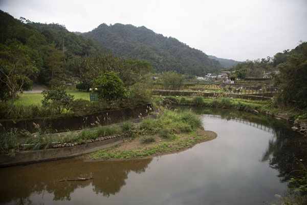 Photo de Small river with tea plantations near JingualiaoPinglin - Taiwan