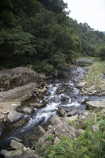 Picture of Small river up the Jingualiao valleyPinglin - Taiwan