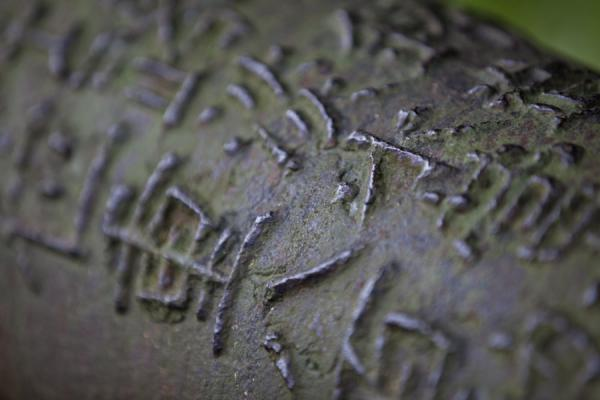 Picture of Detail of one of the cannons with Chinese charactersTamsui - Taiwan