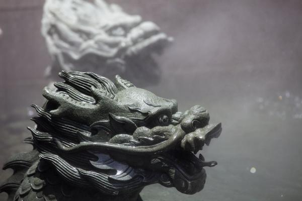 Picture of Heads of dragons in a pool of Wen Wu Temple - Taiwan - Asia