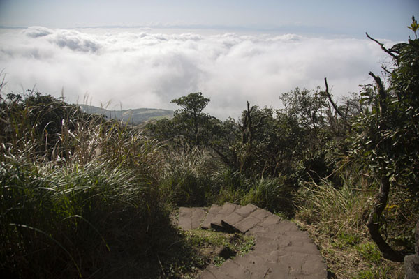 Stone trail with cloud cover in the background: view from near the east peak of Mount Qixing | Yangmingshan National Park | Taiwan