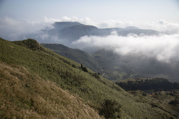 View of the slopes of Mount Qixing | Yangmingshan National Park | 台湾