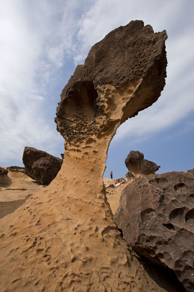 Picture of Looking up the mushroom rock formation of the Cute PrincessYeliu - Taiwan