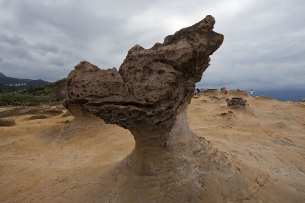 Foto van Formation resembling a dragon head on the coastline of YeliuYeliu - Taiwan