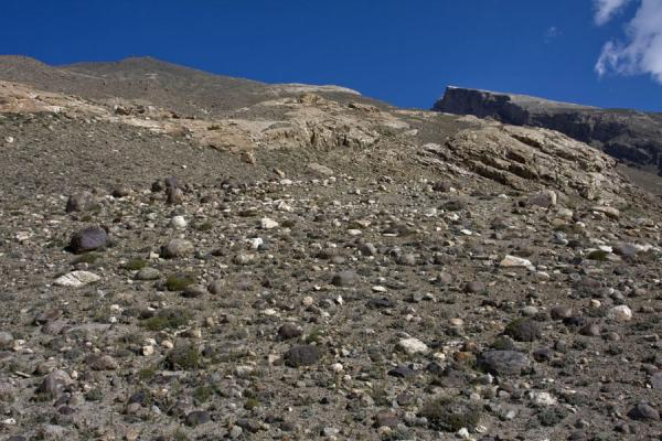 Picture of Mountain slope, the petroglyphs can be found a little higher up