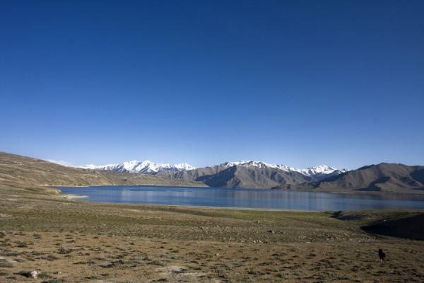 Picture of Yashil Kul (Tajikistan): Looking over Yashil Kul from the east