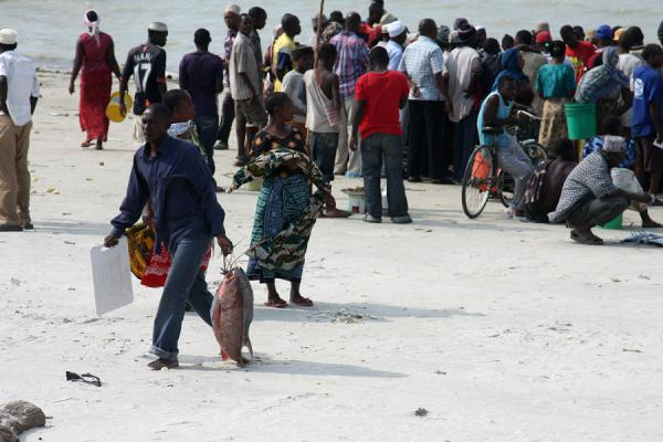 Foto de People meeting fishermen on the beach to buy fishBagamoyo - Tanzania