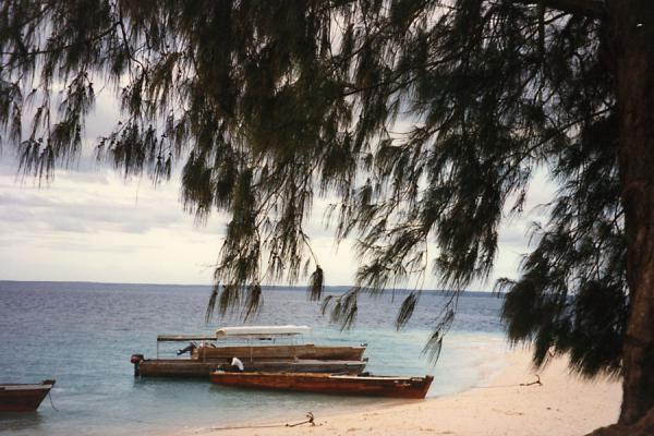 Picture of Boats at Zanzibar