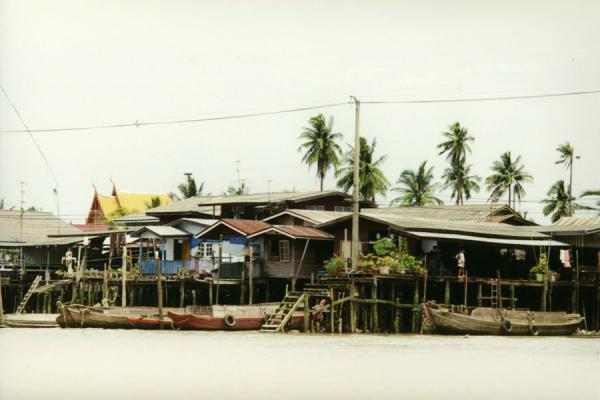 Picture of Bangkok Cycling tour (Thailand): From the small boat that carried our bikes: river with houses on stilts and boats