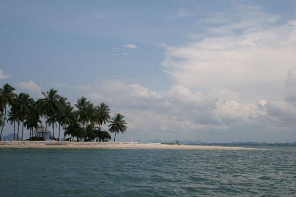 Palm trees, beach and faraway mainland forming the horizon | Ko Mook | Thailand