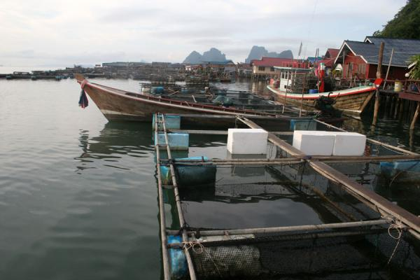 Picture of Ko Panyi (Thailand): Ko Panyi consists mainly of fishing nets, boats and houses