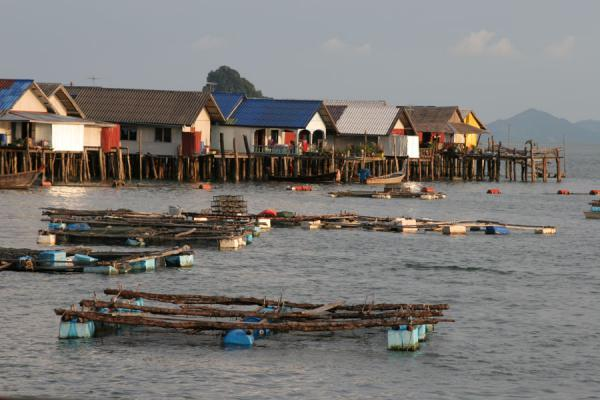 Boats and houses on the western side of Ko Panyi | 沟搬移 | 国所