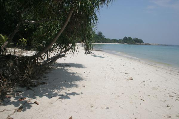 White beach of Ao Wai on Ko Samet | Ko Samet | Thailande