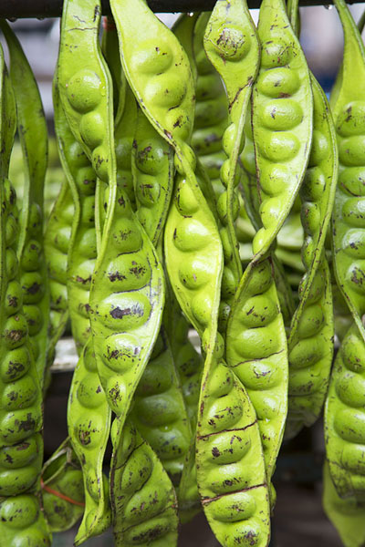 Close-up of big beans | Nonthaburi market | Thailande