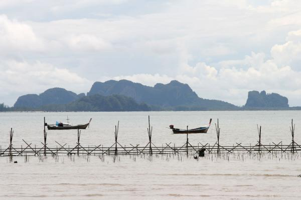 Picture of Thai Fishermen (Thailand): Fisherboats and fishing village at Ko Mook