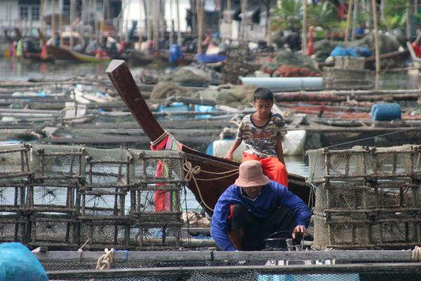 Picture of Thai Fishermen (Thailand): Fisherman in Ko Panyi