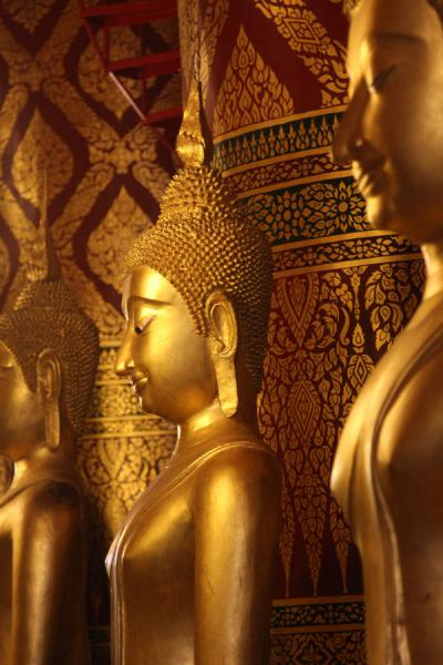 Picture of Wat Phanan Choeng (Thailand): Golden Buddha statues peacefully looking down at the visitor
