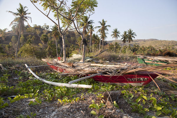 Photo de Traditional fisher boat on the beach at BeloiAtauro - Timor Oriental