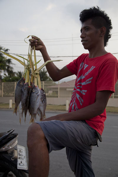 Picture of Guy selling fish from his motorbikeDili - Timor-Leste