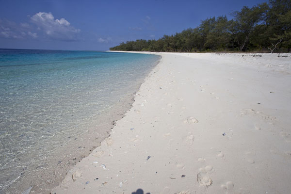 Picture of Jaco island (Timor-Leste): View of the white and deserted beach of Jaco island