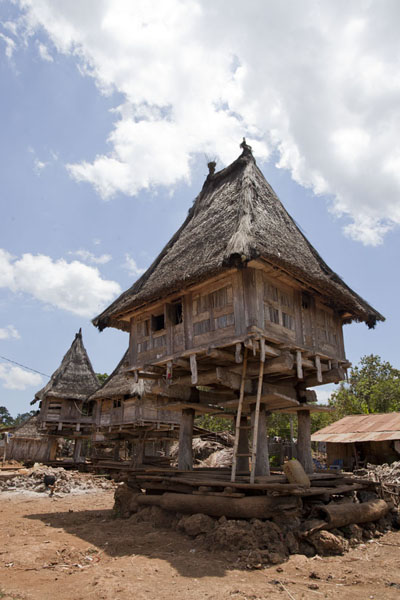 Photo de Traditional Fataluku house in LospalosLospalos - Timor Oriental