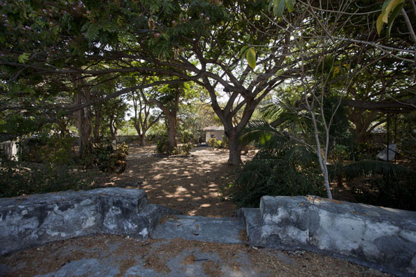 Picture of Maubara fortress (Timor-Leste): The inside of the fortress has trees, shade, and places to relax