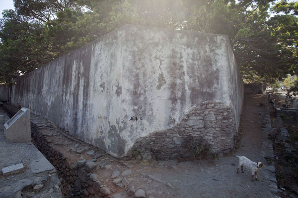 Picture of Maubara fortress (Timor-Leste): Fortress of Maubara with goat next to it