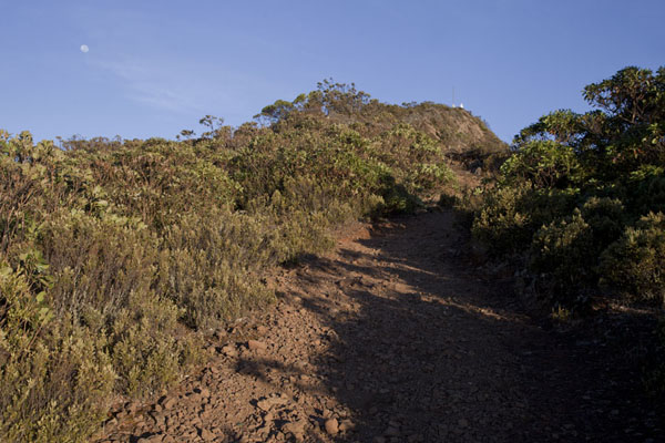The last stretch of the trail to the summit of Mount Ramelau | Mount Ramelau | Timor-Leste