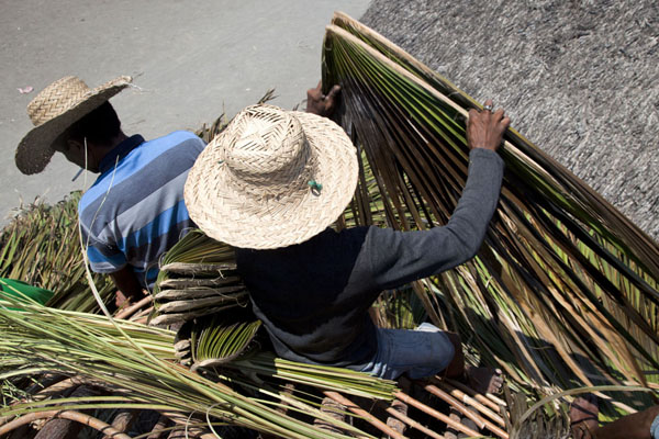 Men working to thatch the roof of a hut | Suai Loro | 帝汶勒斯特