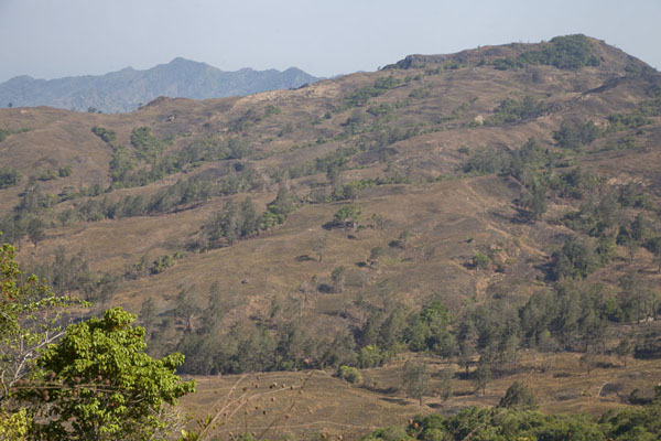 Picture of Road from Suai to Oeleu (Timor-Leste): The mountainous landscape of western East Timor